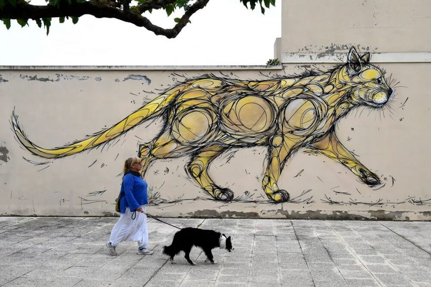 Penelles graffitis