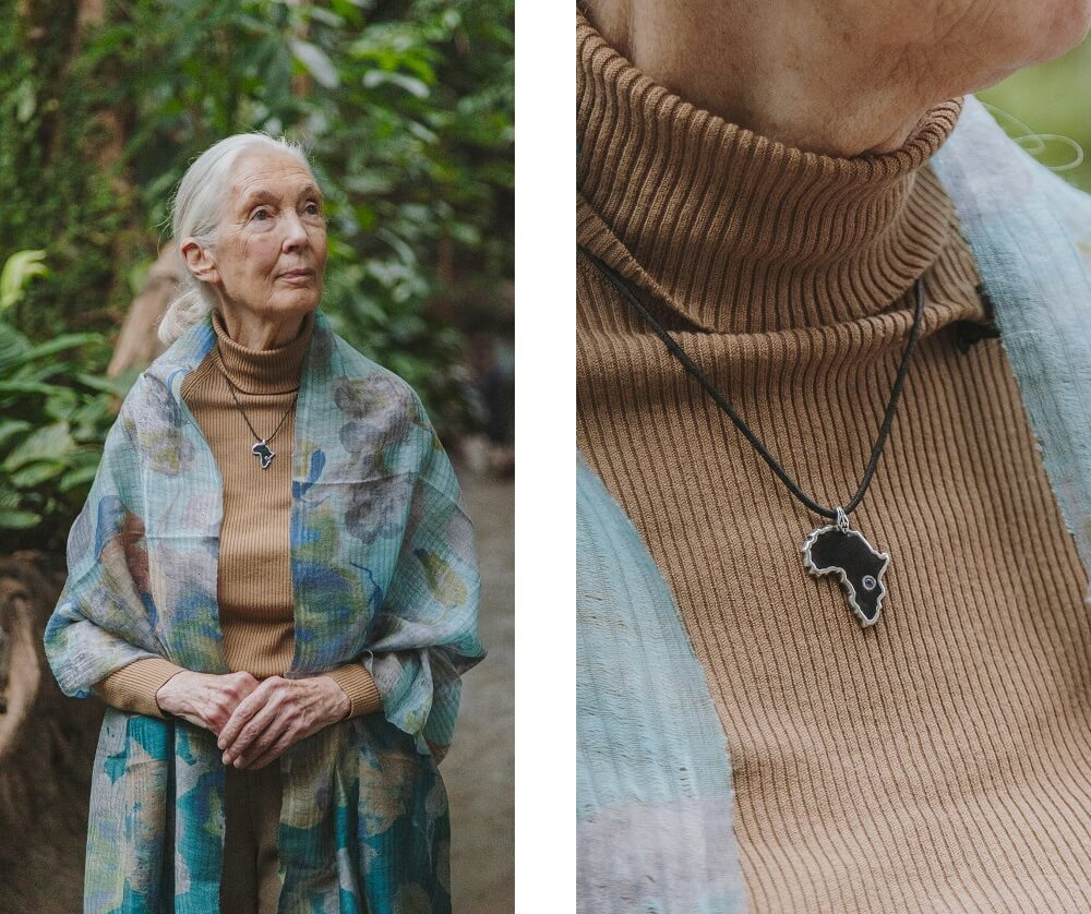 ALMA Jane Goodall The NBP