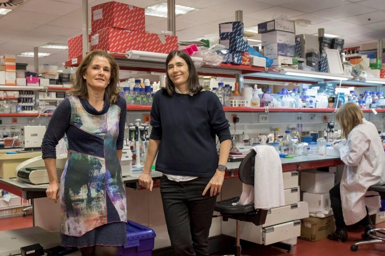 Las investigadoras del CNIO Maria Blasco y Paula Martínez, dos de las fundadoras de la empresa.