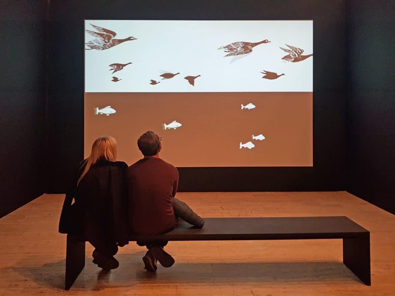 Exposición Escher Museu Marítim