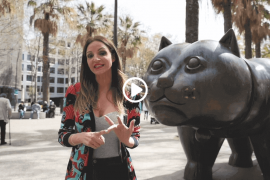 El Gato de Botero - barcelona street art
