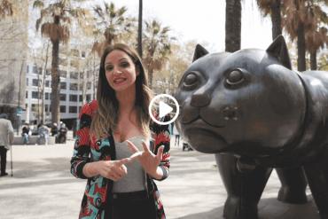 el gato de botero barcelona street art