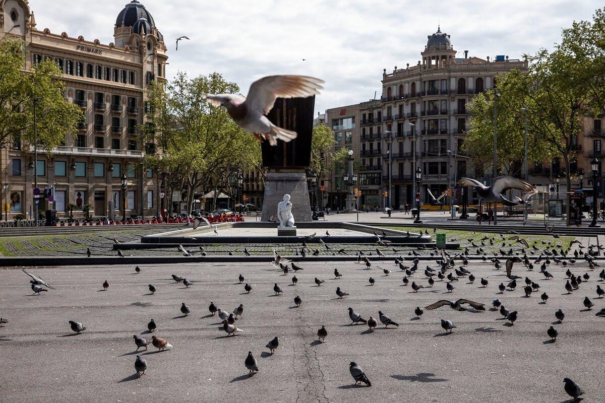 Coloms Plaça Catalunya