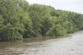 software de Neurite permite conocer el riesgo de inundaciones en las cuencas hidrológicas